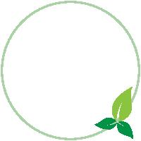 cremazione e ambiente